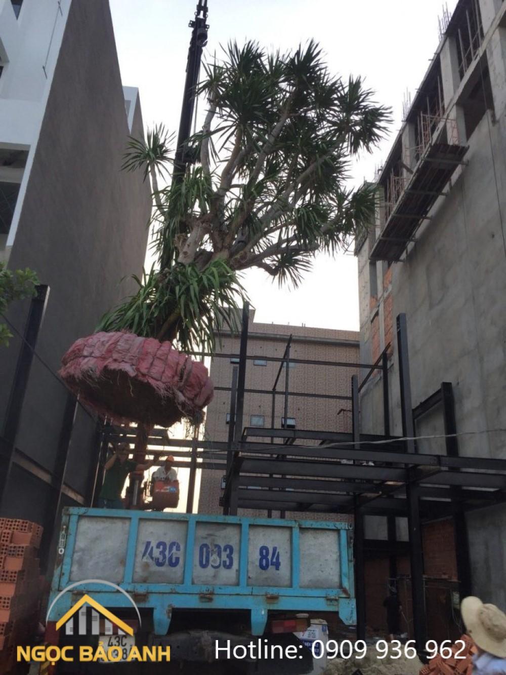 Gia công lắp đặt nhà tiền chế Quận Tân Phú